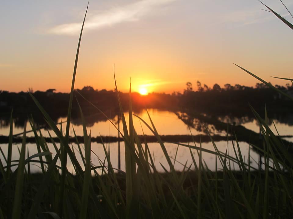 Hoàng hôn sông Đuống- ảnh Shipper GHTK chụp